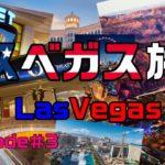 ラスベガス旅行 2014 Episode#3