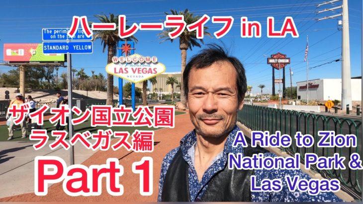 ザイオン国立公園、ラスベガスに行って来ました!A ride to Zion National Park & Las Vegas