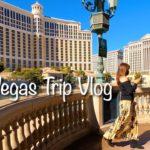 【ラスベガス旅行Vlog】アラフォー女子のおすすめ!絶対食べたい観たい買いたい物はコレ/Las Vegas Trip Vlog Walk Eat Shop with Me