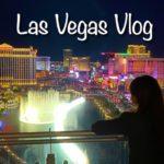 【ラスベガスvlog】大迫力!噴水ショーの絶景を高級ホテルで楽しむ【コスモポリタンルームツアー】/ Las Vegas The Cosmopolitan hotel room tour