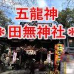五龍神の田無神社・宝くじ当選祈願・金運 開運 財運のご利益パワースポットJapan Tokyo Tanashi Shrine