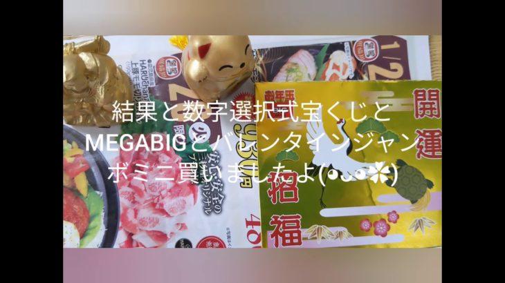 結果と数字選択式宝くじとMEGABIGとバレンタインジャンボミニ買いましたよ(・∀・)皆様に幸運が訪れますように( ╹▽╹ )