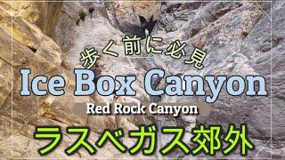 Ice Box Canyon 【ラスベガス郊外・レッドロック】ハイキング