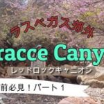 Teracce Canyon 【ラスベガス郊外・上級ハイキング】レッドロックキャニオン