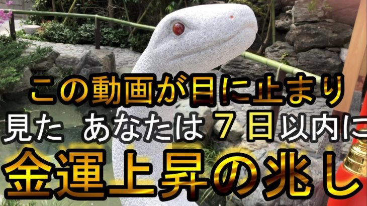 【金運上昇】宝くじ高配当 幸運を呼び込む白蛇様を祀る神社